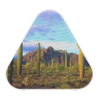 Desert in springtime speaker