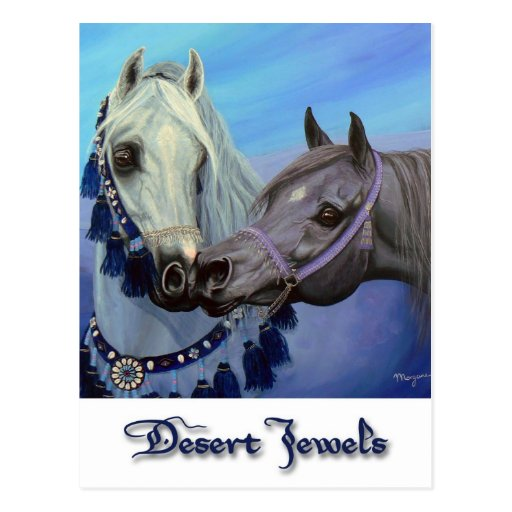 Desert Jewels Arabian horses postcard