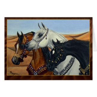 Desert Kings Arabian horses greeting card