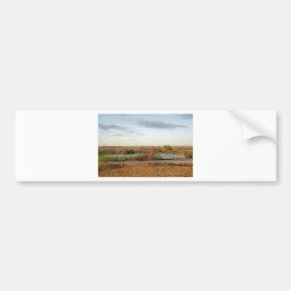 desert landscape bumper sticker