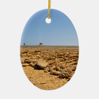 desert landscape ceramic ornament