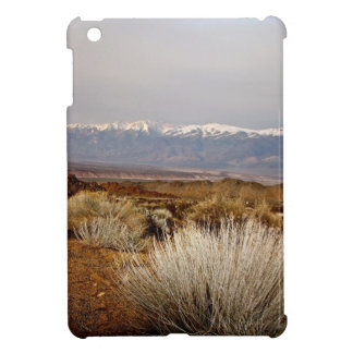 DESERT LANDSCAPE IN EARLY SPRING iPad MINI CASES