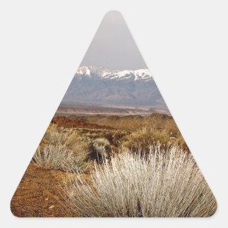DESERT LANDSCAPE IN EARLY SPRING TRIANGLE STICKER