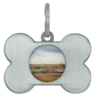 desert landscape pet ID tag