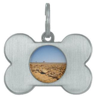 desert landscape pet tag