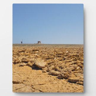 desert landscape plaque