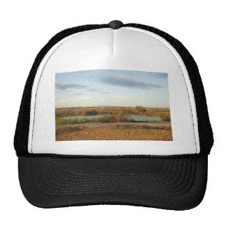 desert landscape trucker hat