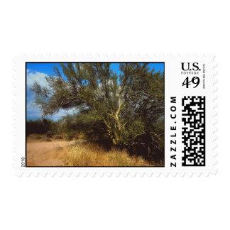 Desert Life stamps