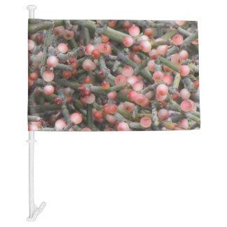Desert Mistletoe Berries Car Flag