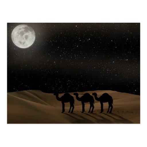 Desert Moon Post Card