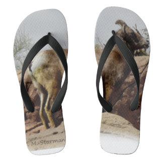 Desert Mountain Goat Flip Flops