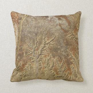 Desert Nature Patterns Throw Pillow