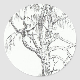 Desert Oak NT 16 Oct 2010.jpg Classic Round Sticker