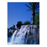 Desert oasis postcard