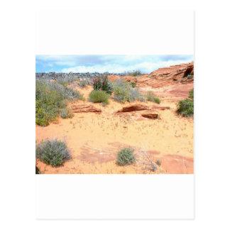 Desert of Red Sand Postcard