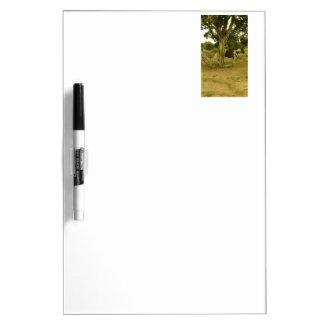 Desert Paint Horse Dry-Erase Whiteboard