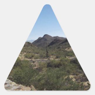 Desert Pass Triangle Sticker