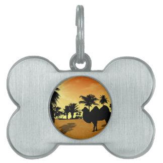 Desert Pet Tag