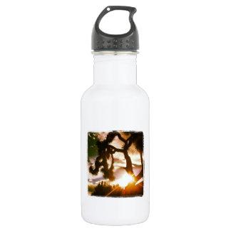 Desert 18oz Water Bottle