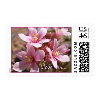 Desert Pink: Love is - Postage #1 stamp