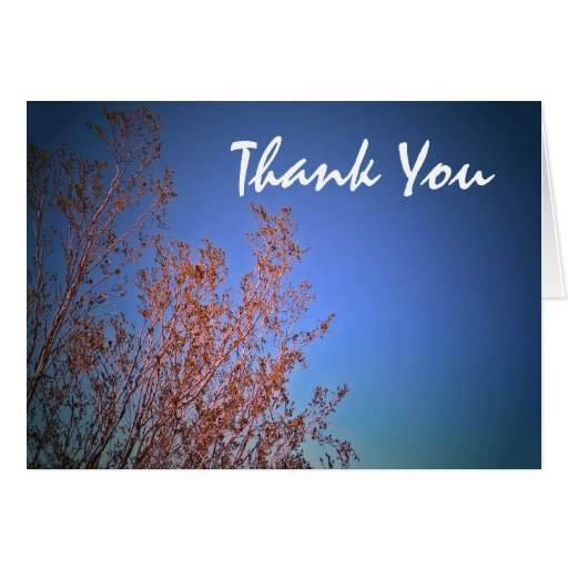 Desert plants, Thank You Greeting Card