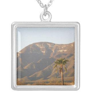 Desert ranch landscape near Monterey, Mexico. Square Pendant Necklace