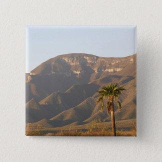 Desert ranch landscape near Monterey, Mexico. Pinback Button