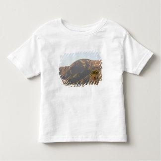 Desert ranch landscape near Monterey, Mexico. Toddler T-shirt