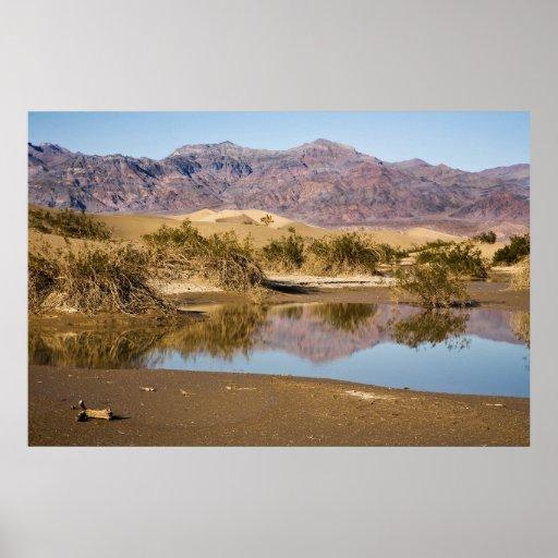 Desert Reflection Poster