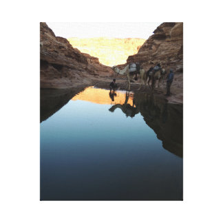 Desert Reflections Canvas Print