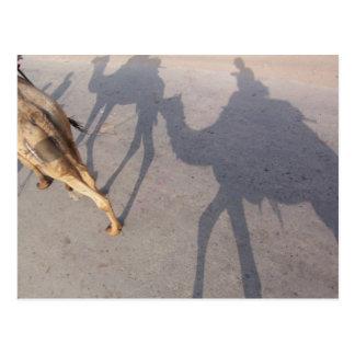desert ride postcard