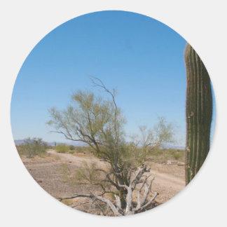 Desert Road and Cactus Classic Round Sticker