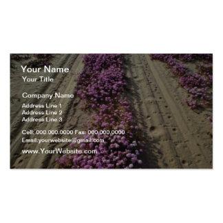 Desert Roadway flowers Business Card Template