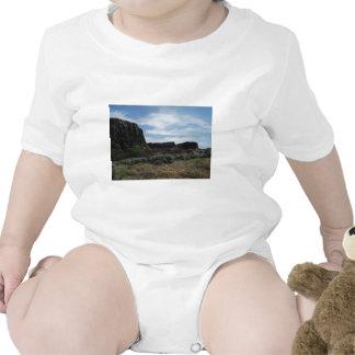 Desert Rock Buttes Creeper