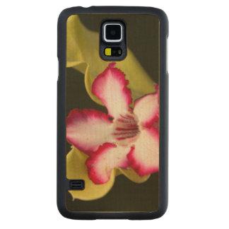Desert-Rose (Adenium Obesum), South Africa Carved Maple Galaxy S5 Slim Case