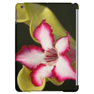 Desert-Rose (Adenium Obesum), South Africa iPad Air Case