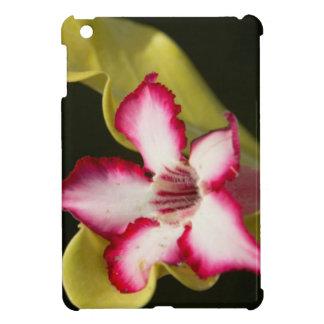 Desert-Rose (Adenium Obesum), South Africa iPad Mini Cover