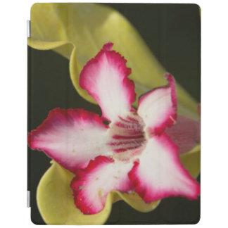 Desert-Rose (Adenium Obesum), South Africa iPad Smart Cover