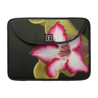 Desert-Rose (Adenium Obesum), South Africa MacBook Pro Sleeve