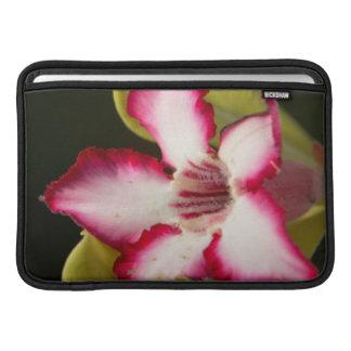 Desert-Rose (Adenium Obesum), South Africa MacBook Sleeve