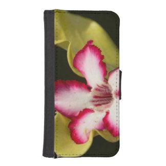 Desert-Rose (Adenium Obesum), South Africa iPhone 5 Wallets
