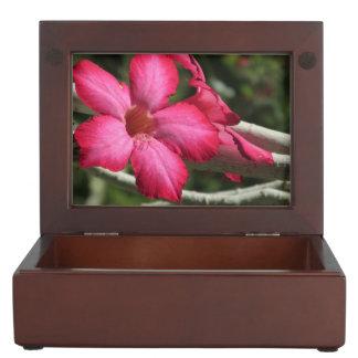 Desert Rose Keepsake Box