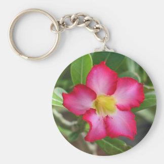 Desert Rose Keychain