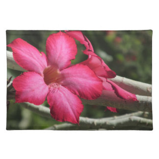 Desert Rose Place Mat