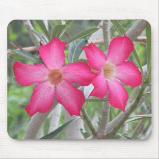 Desert Roses Mouse Pad