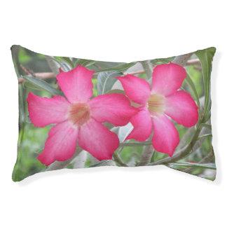 Desert Roses Pet Bed