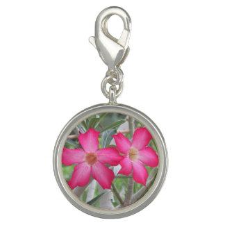Desert Roses Photo Charms