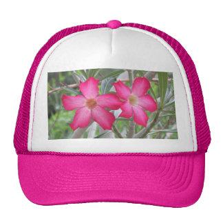 Desert Roses Trucker Hat