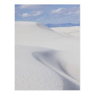 Desert Sand Dunes Postcard