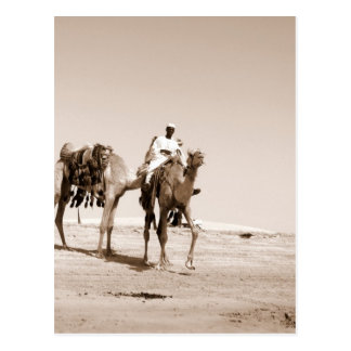 Desert Scene Post Card